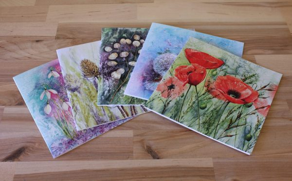 Flowers and Seedheads collection of greetings cards