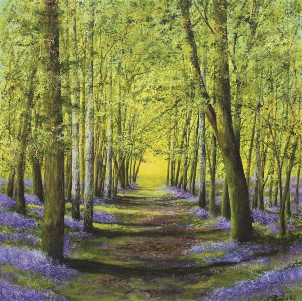 Into the Light- a bluebell greetings card