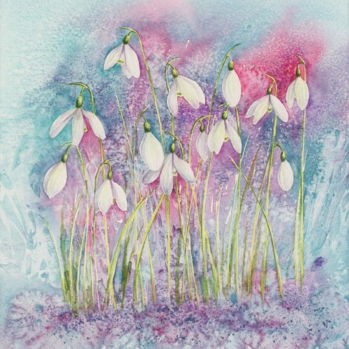 Snowdrops - a snowdrops greetings card