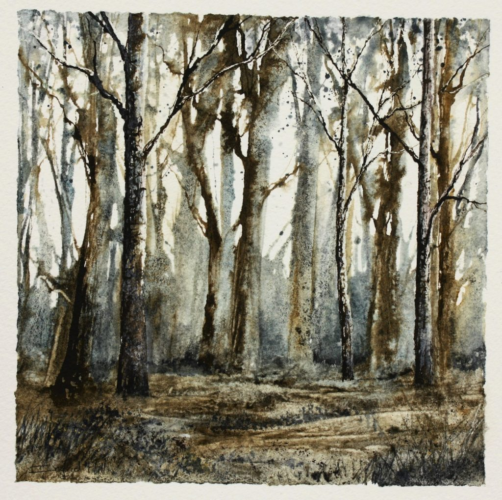 Chestnut Wood - An atmospheric woodland scene in watercolour and mixed media