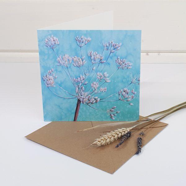 Cow Parsley Seedhead - a cow parsley greetings card