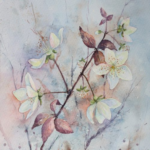 Hedgerow Blossom - a floral greetings card