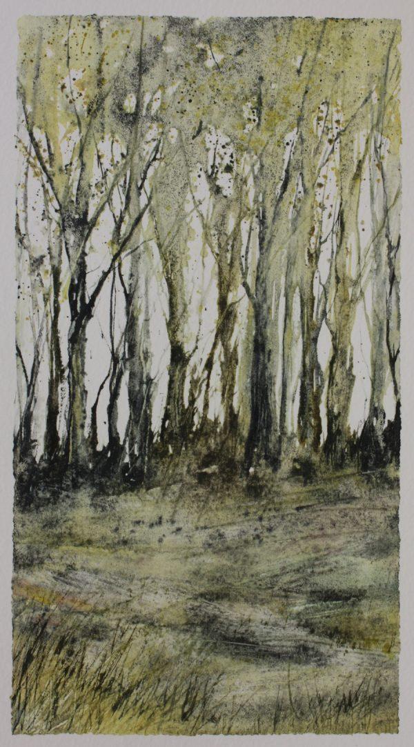 Spring Woodland scene in mixed media