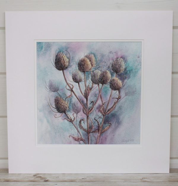 Standing Proud Teasel Watercolour Mounted