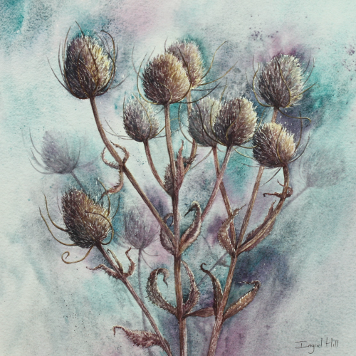 Standing Proud - a Teasels painting