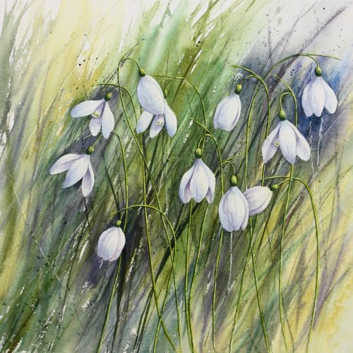 Winter Gems - a Snowdrops greetings card