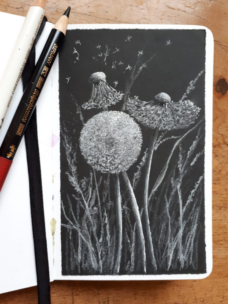 White sketch on black background of dandelion seed heads