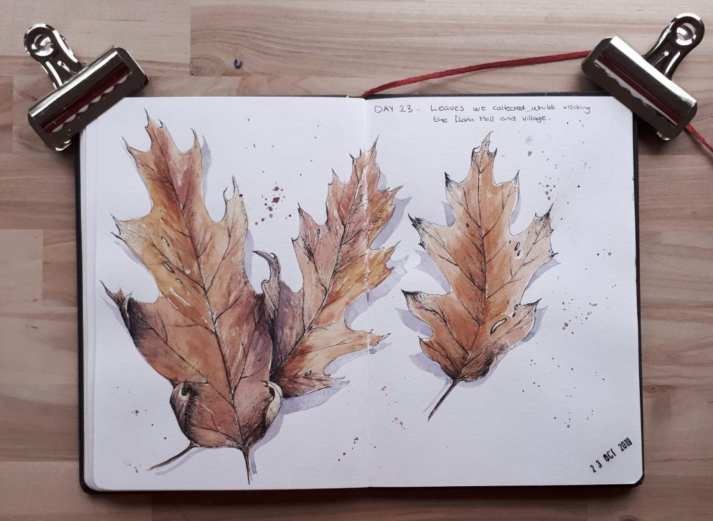 Autumn leaves pen and wash study