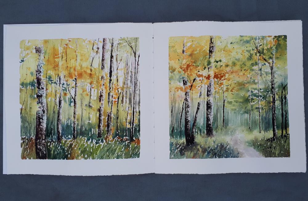 Woodland Studies in my own sketchbook