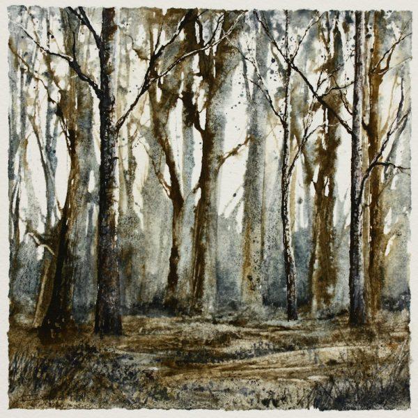 Chestnut Wood mixed media woodland scene