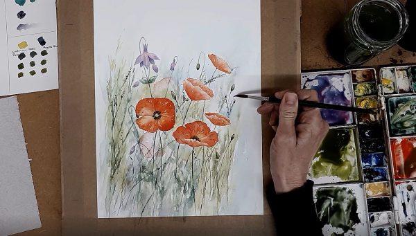 Poppies & Aquilegia Masterclass Watercolour Workshop